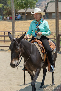 The 2018 Bear Valley Springs Horse and Mule Show