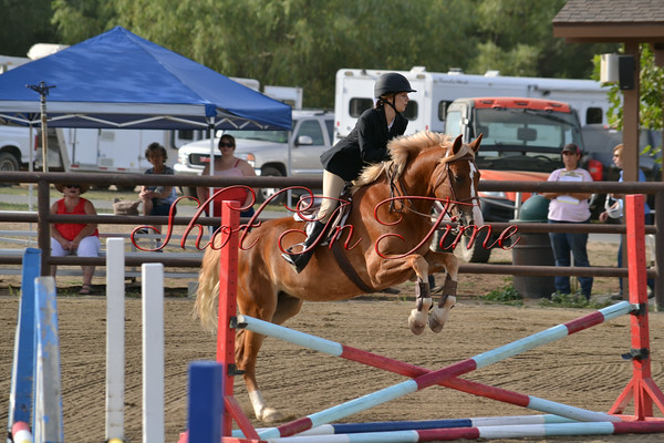 2014 Bear Valley Springs Mule Show