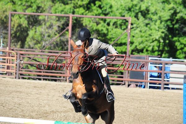 2015 Bear Valley Mule Show