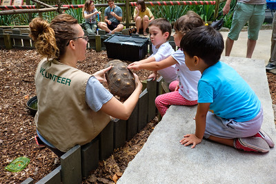 Zoo Day 2017