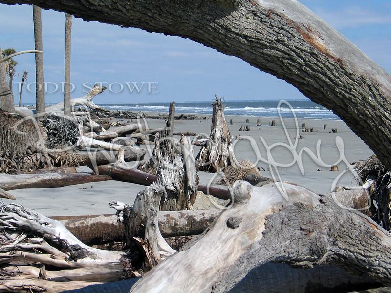Hunting Island Erosion