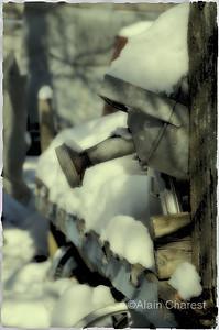""""""" Le temps des fleurs reviendra """" Scrap yard / courre à scrap, St-Amable, Qc, Canada;  a place where peoples give up things and the owner buy some in garage sales or flea market. I visit this place since 2011 with three photographers in the project """" Beauté récupérée"""".  Les gens abandonnent chez ce propriétaire des choses dont ils ne veulent plus et il achète dans les ventes de garage et les marchés aux puces des objets divers. Depuis 2011 je visite l'endroit avec trois autres photographes dans le cadre du projet """"Beauté récupérée""""."""