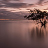 Nudgee Beach sunrise in Brisbane, Australia