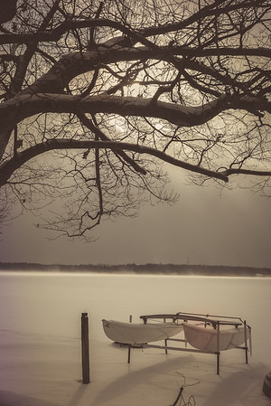 Waiting for Summer - Wamplers Lake, MI