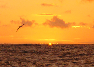 The final clear sunset in the trip south across the Drake Passage