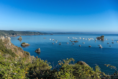 Trinidad Bay Fishing fleet, Trinidad, California