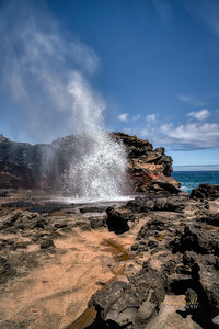 Scenes from the island of Maui in Hawaii