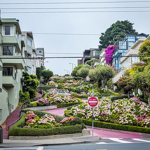 San Francisco: Lombard Street--Crookiest Street in the World