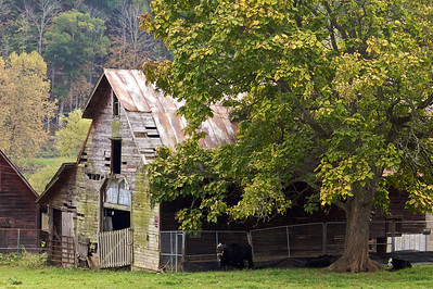 """Old barn along the New River """"rails to trails"""" bike path near Fries, Virginia"""