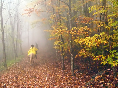 Riding in the mist, Grayson Highlands State Park, Virginia