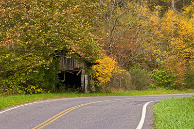Old shack in the fall foliage, Fries, Virginia
