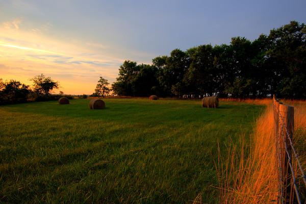 Wincherster-Frederick County