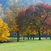 Golden Fall edit left 2