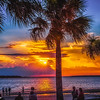 2. palms and sunset
