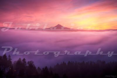 Foggy Sunrise in Portland.