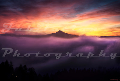 Another Foggy Sunrise in Portland.