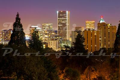 Portland through its trees.