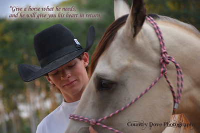 "Quote - ""Give a horse what he needs..."""