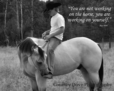 "Quote - ""You are not working on the horse..."""