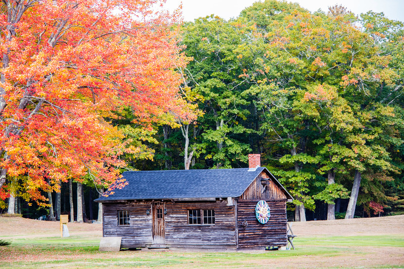 Old log cabin and colorful trees