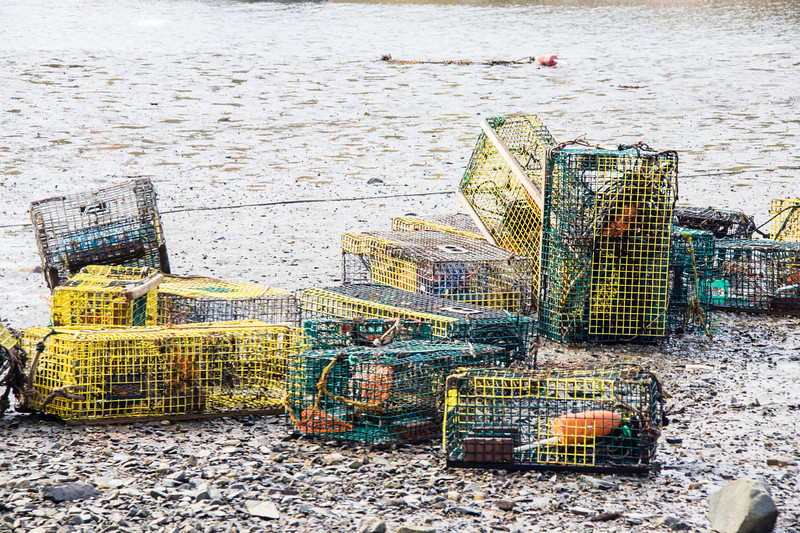 Lobster pots at low tide on rocky shore