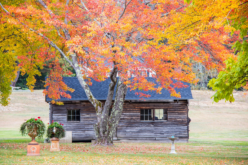 Old log cabin in Fall color