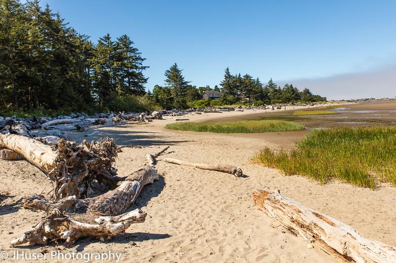 Driftwood on a beach in Oregon