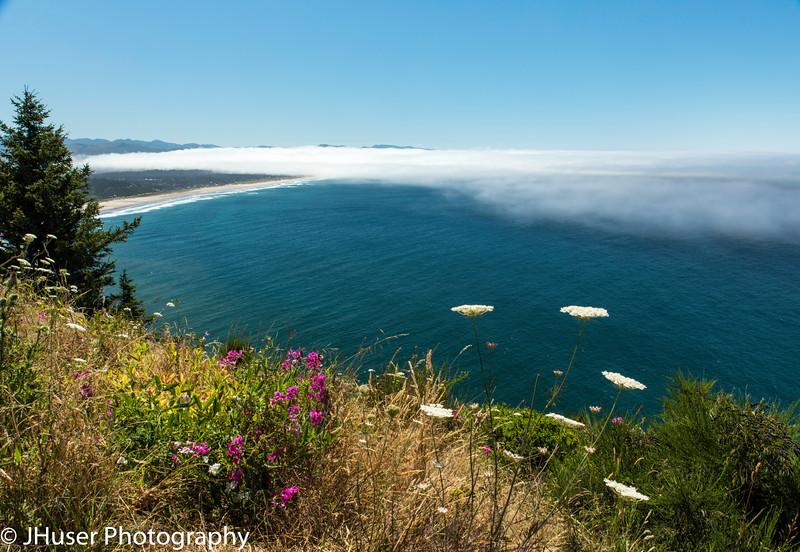 View near Cape Meares along the Oregon coast