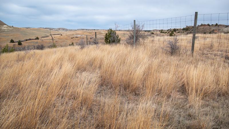 April Grasslands in the Little Missouri Grasslands of North Dakota