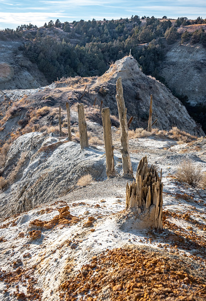 Weathered  Reminders of the Dangers of Devils Pass