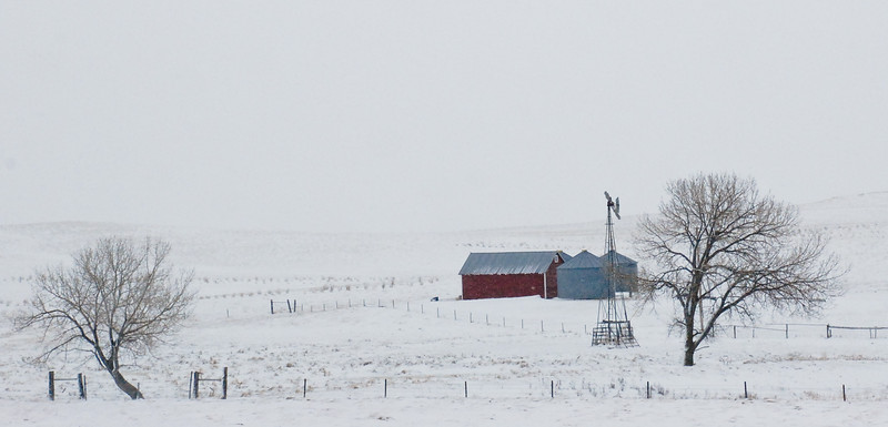 April Snows on the Grasslands