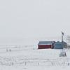 April Snows on the Grasslands