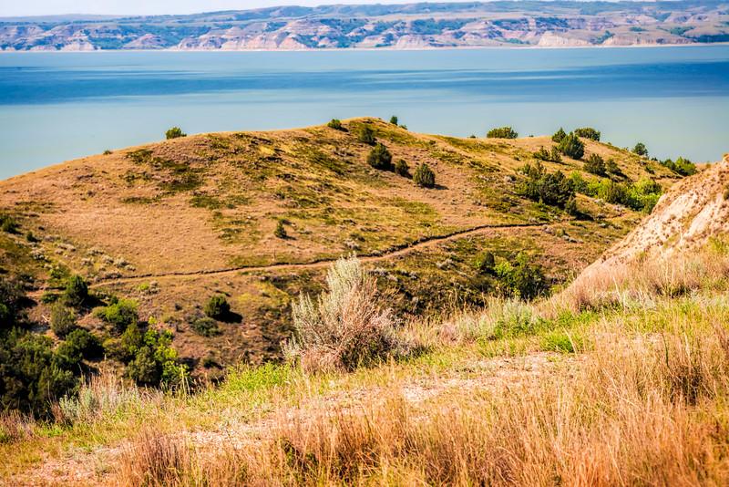 trail at Birnt Hills