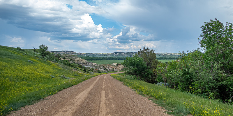 Driving the Badlands in June