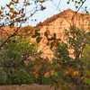 """The bluff across the river that T Roosevelt often gazed at from his front porch, and wrote about.<br /> <br /> <br /> You can own this image as a wall decor, coffee mug, mouse pad or other product.  Just click the """"buy"""" button to go shopping."""