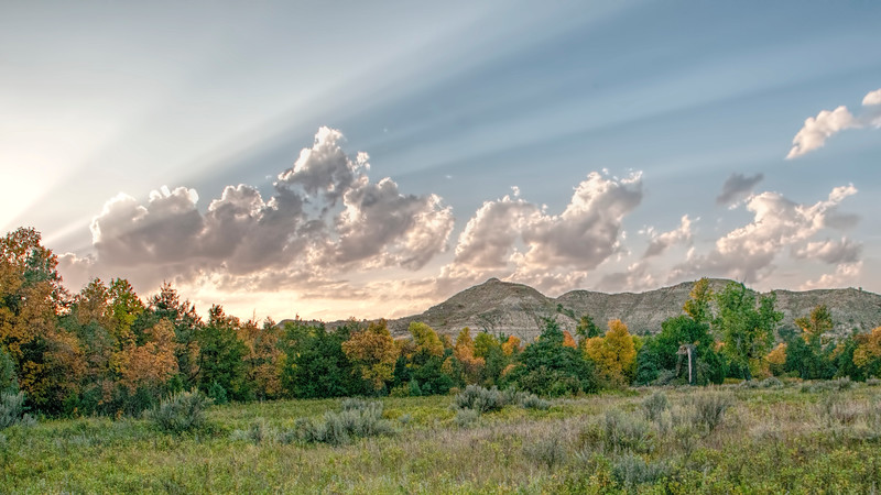 "The wooded area surrounding the historic Elkhorn Ranch site. <br /> <br /> <br /> You can own this image as a wall decor, coffee mug, mouse pad or other product.  Just click the ""buy"" button to go shopping."