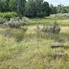 Foundation Blocks of TR's Elkhorn Ranch Cabin