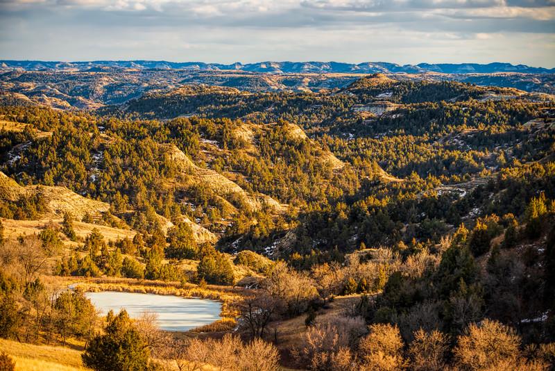 Rolling hillsides of evergreens