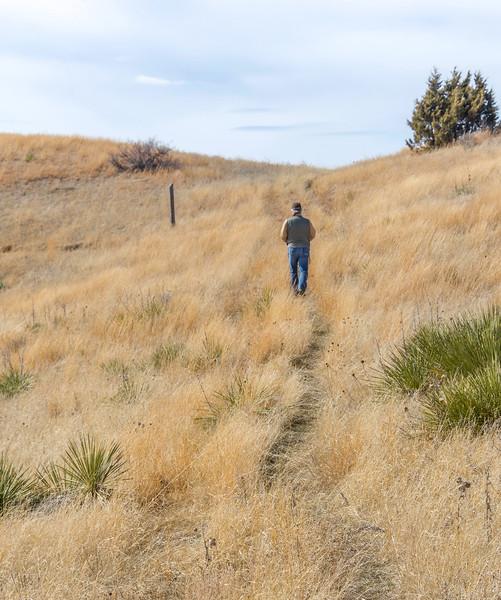 Summit trail starts in a grasslands area