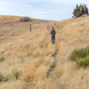 Summit trail starts in a grasslands area