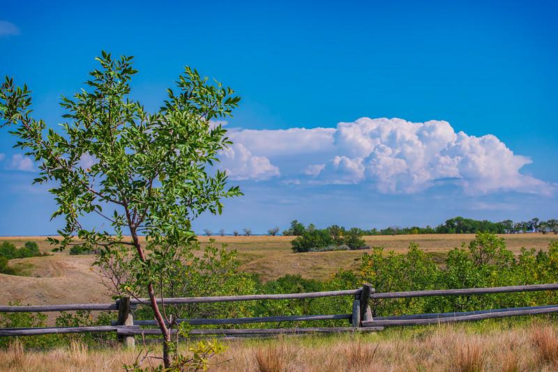 Birnt Hills Prairie