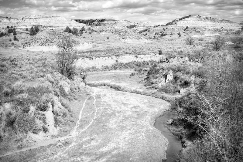 Bennett Creek in the spring