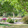 Dickinson Gardens
