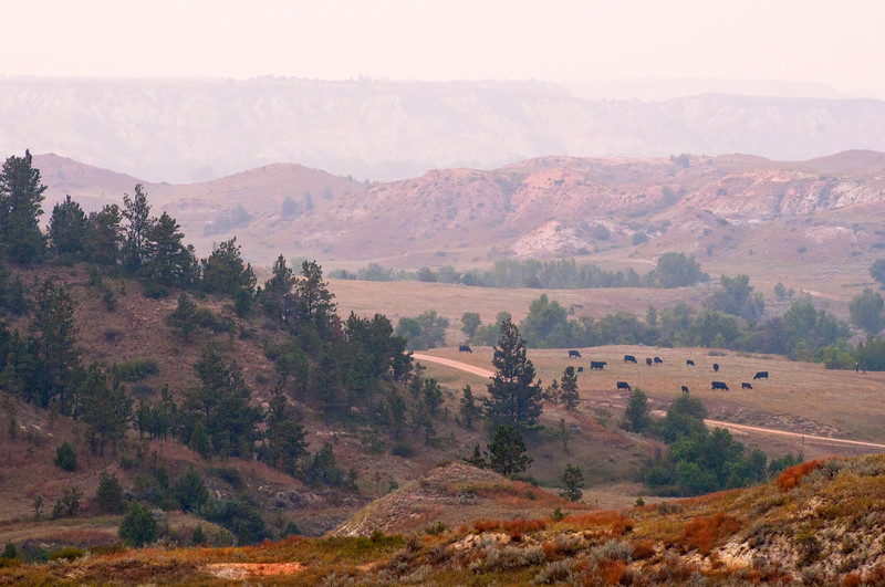Smoke-filled valley