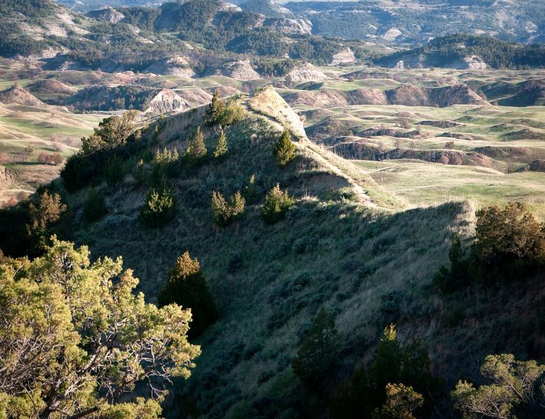 boicourt trail across the ridge