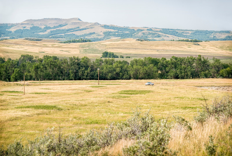 """The prairies surrounding the Killdeer Mountains are cow country, pastures for grazing and hay fields for winter feeding.<br /> <br /> You can own this image as wall decor or other products.  Just click the """"buy"""" button."""