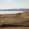Earth Lodge Village of the MHA Nation, North Dakota #23