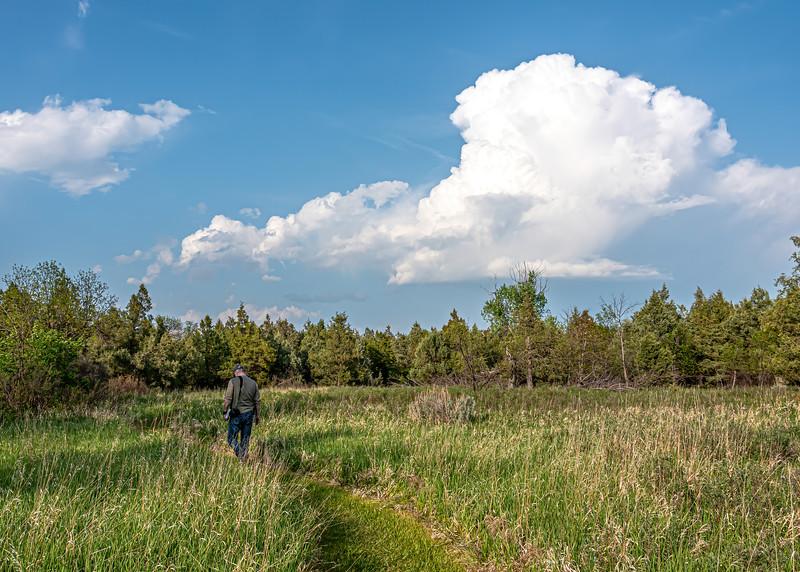 Elkhorn Ranch Trail, North Dakota