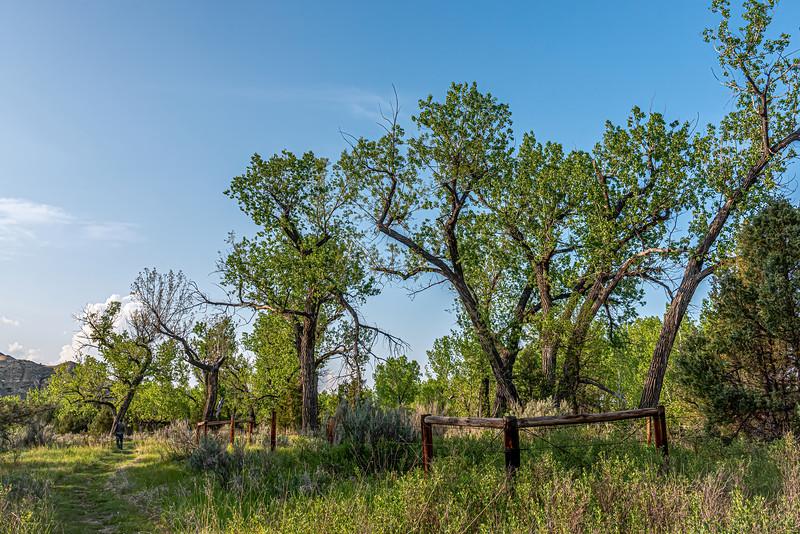 Theodore Roosevelt's Elkhorn Ranch in North Dakota