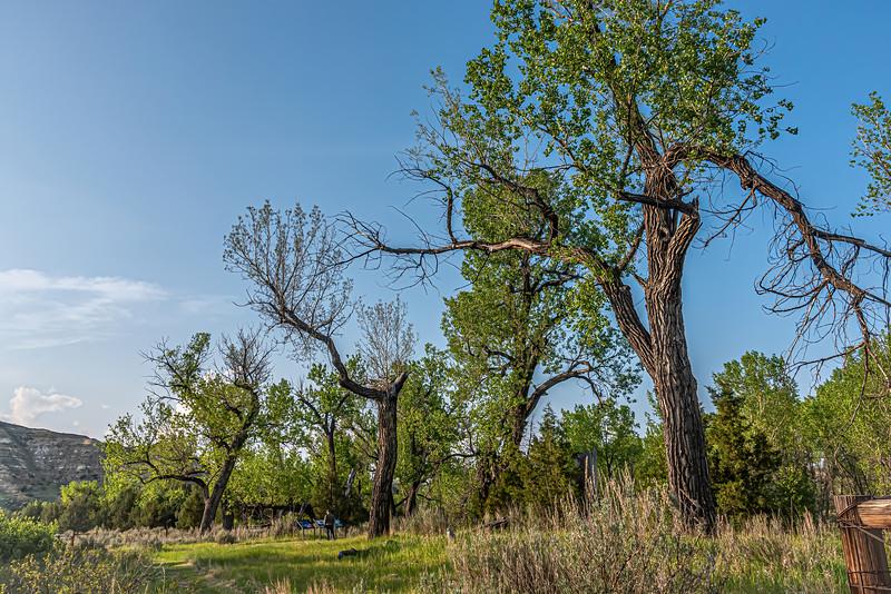 Elkhorn Ranch, Theodore Roosevelt National Park, North Dakota